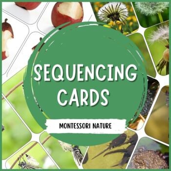 Sequencing Cards for Teaching Sequencing Skills
