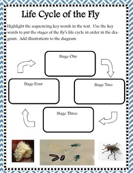 Sequencing Close Evidence Based Passages