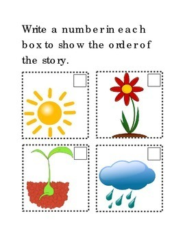 Sequencing How Flowers Grow Following Directions Comprehension Emergent Reader