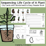 Sequencing: Life Cycle of A Plant