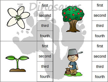 Sequencing: Apple Tree Life Cycle