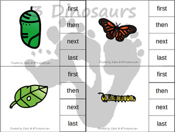 Sequencing: Life Cycle of a Butterfly