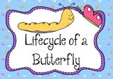 Sequencing: Life Cycle of a Butterfly - The Very Hungry Caterpillar