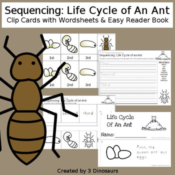Sequencing: Life Cycle of an Ant