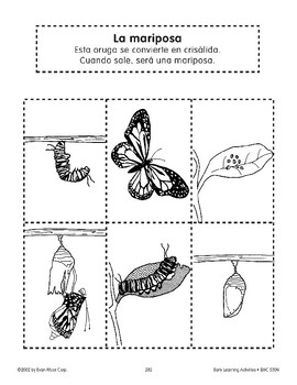 Sequencing: The Butterfly