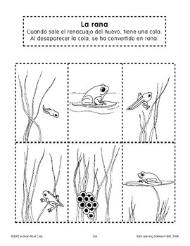 Sequencing: The Frog