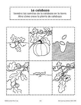 Sequencing: The Pumpkin