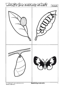 Sequencing Visual Texts – Ages 4-7