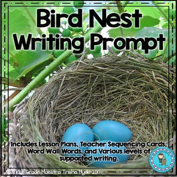 Narrative Writing the Bird's Nest
