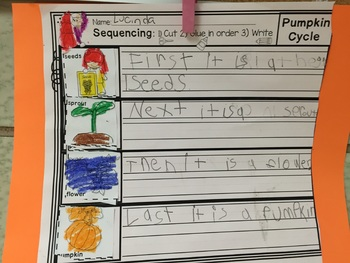 Sequencing Writing Prompt