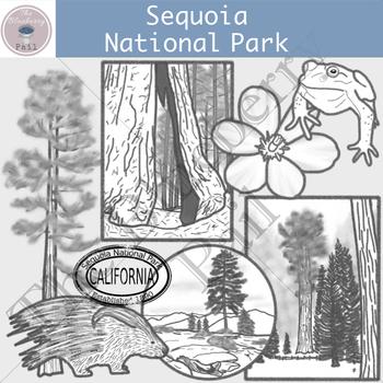 Sequoia National Park Clipart Set
