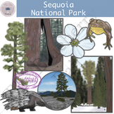 Sequoia National Park Clipart Set