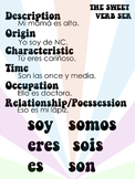 Ser Conjugation and Use Poster