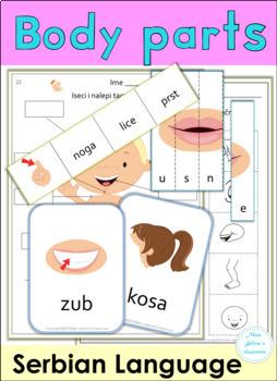 Serbian Body Parts Latin Alphabet