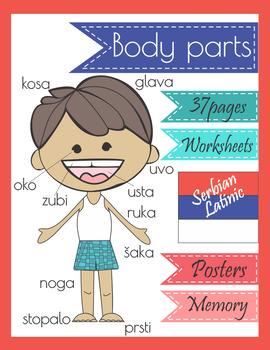 Serbian Body Parts Worksheets Poster Memory Game