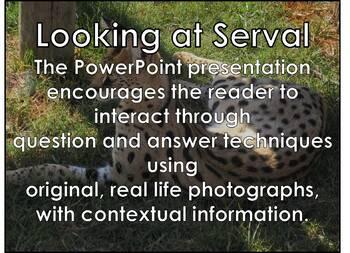 Serval - Interactive PowerPoint presentation