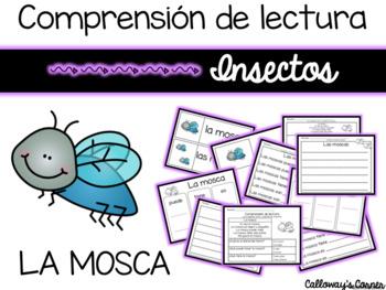 Set de comprensión de lectura. Insectos: la mosca.