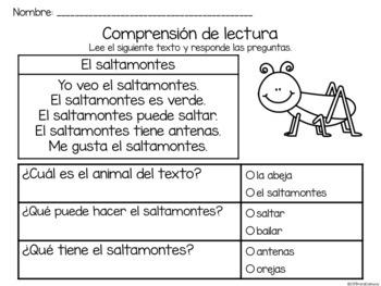 Set de comprensión de lectura. Insectos: saltamontes.