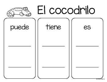 Set de comprensión de lectura. Zoológico: el cocodrilo