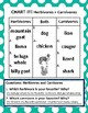 Set of 18: Picture Sort Graphing Activities on Animals & Follow-up Activities