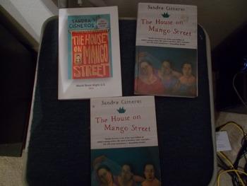 Set of 3 The House on Mango Street Novels