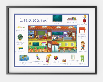 Set of 6 Latin Vocabulary Posters