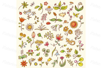 Set of floral design elements, herbs and flowers, hand drawn