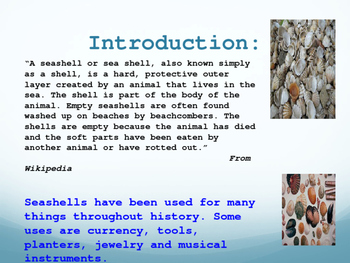 Seven Kinds Of Seashells