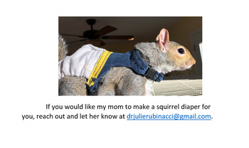 Sew your own squirrel diaper!