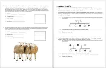 Sex-Linked Traits Punnet Square and Pedigree Practice