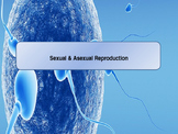 Sexual & Asexual Reproduction Lesson