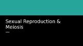 Sexual Reproduction & Meiosis Slideshow
