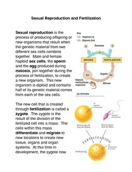 Sexual Reproduction and Fertilization