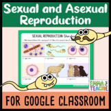 Sexual and Asexual Reproduction Digital INB activities and Quiz
