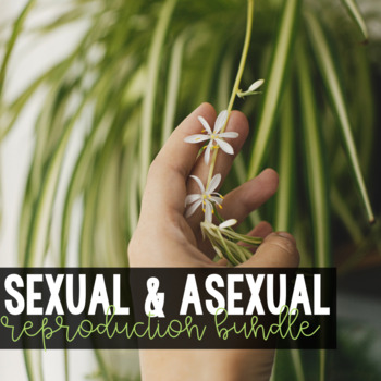 Sexual and Asexual Reproduction Notes and Quiz
