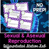 Sexual and Asexual Reproduction Student-Led Station Lab