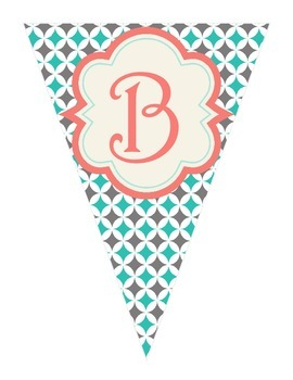 Shabby Chic (Teal, Gray & Coral) Library Banner