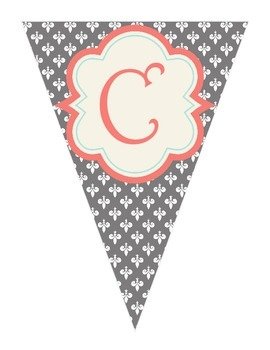 Shabby Chic (Teal, Gray & Coral) Science Banner