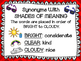 SHADES OF MEANING PACK--Posters--Activities--Fable--Fable