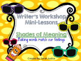 ( Shades of Meaning) Writer's Workshop power-point for 1st and 2nd grade