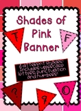 Shades of Pink and Red Banner