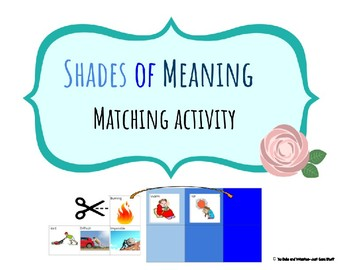 Shades of meaning- A Matching Activity
