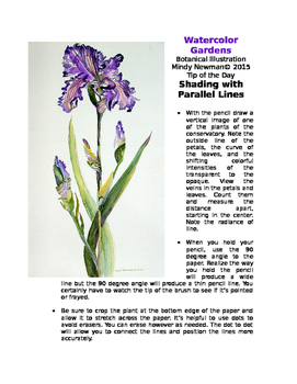 Shading the Iris with Parellel Lines