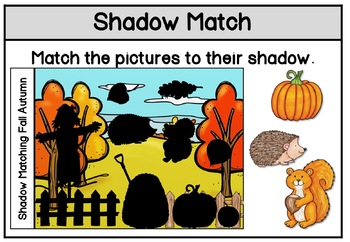 Shadow Matching Fall Autumn