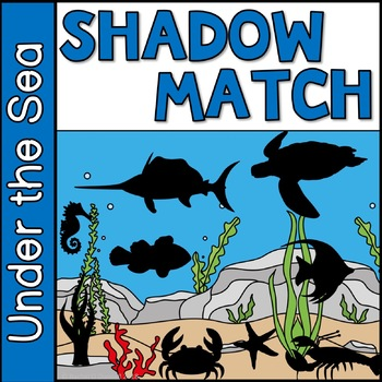 Shadow Matching Under the Sea