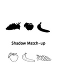 Shadow Recognition: PreK Introduction to shape associations