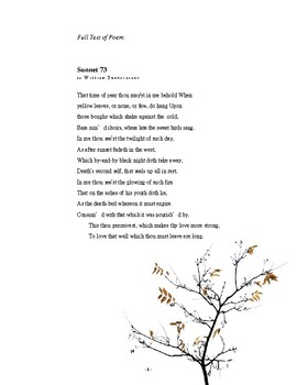 what is the theme of sonnet 73