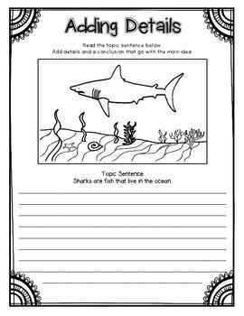 Sharks! Informational Book Study