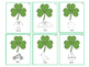 Shamrock Search: An Interactive St. Patrick's Day Articula
