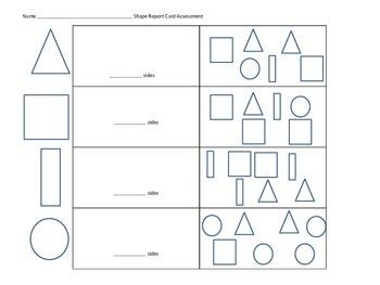 Shape Assessment
